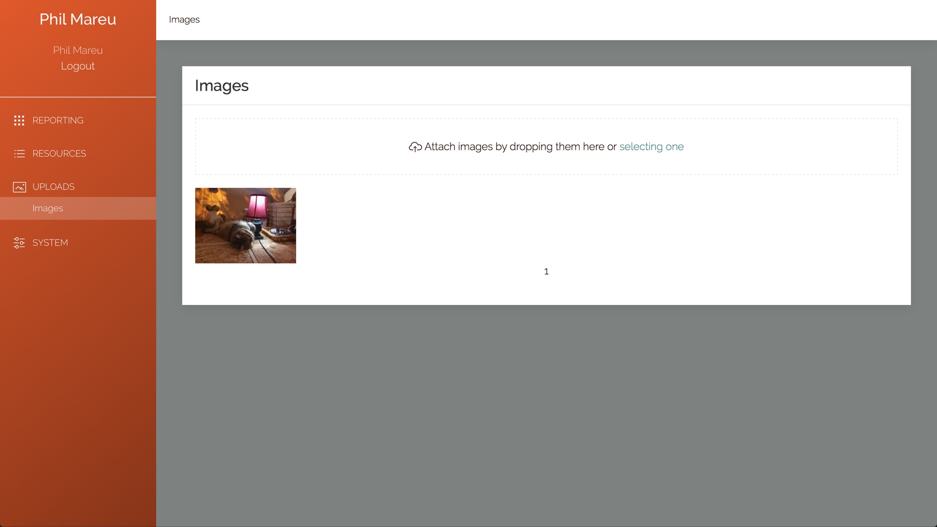 Image is show in gallery after it is uploaded