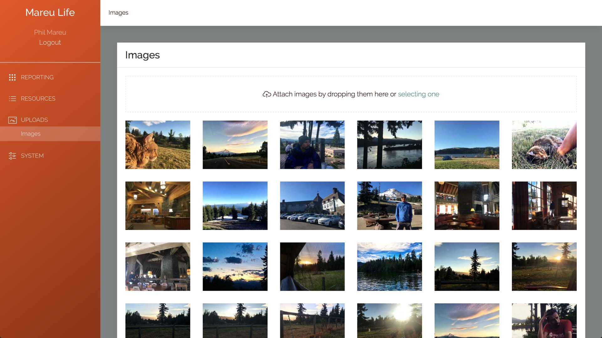 Laramanager images section populated with example images